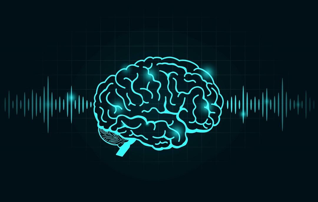 brain blog1
