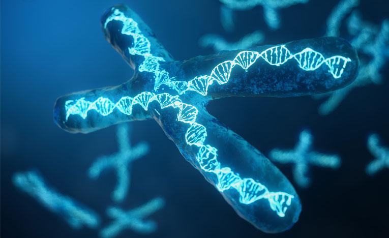 gene-blog